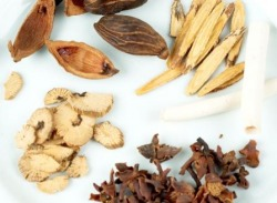 Herbs used in Traditional Chinese Medicine (TCM)